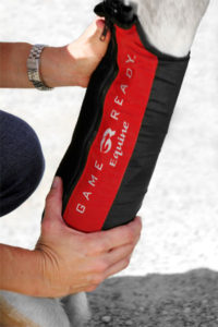 Game Ready Equine Active Compression